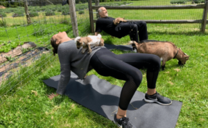 Read more about the article Is Goat Yoga Safe? | A Complete Guide (2021)