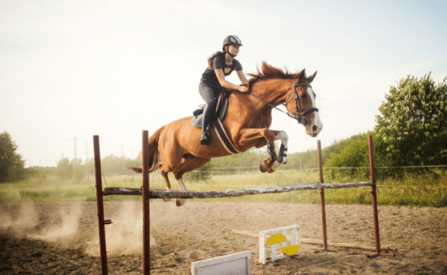Read more about the article Is Horse Riding Dangerous Sport? | A Complete Guide (2021)